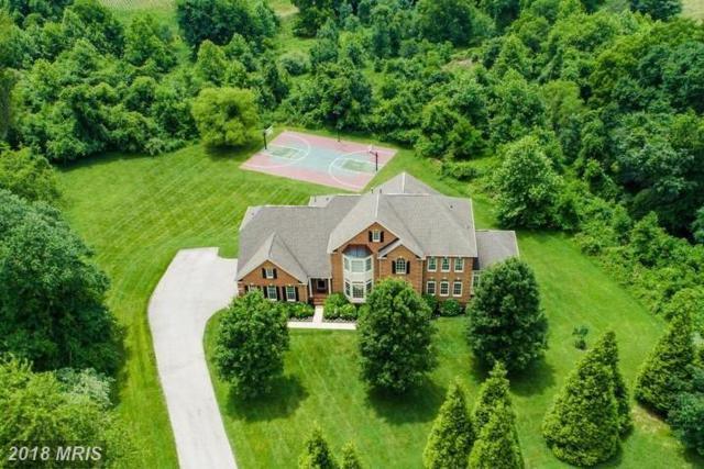 11421 Butterfruit Way, Ellicott City, MD 21042 (#HW10301503) :: Keller Williams Pat Hiban Real Estate Group