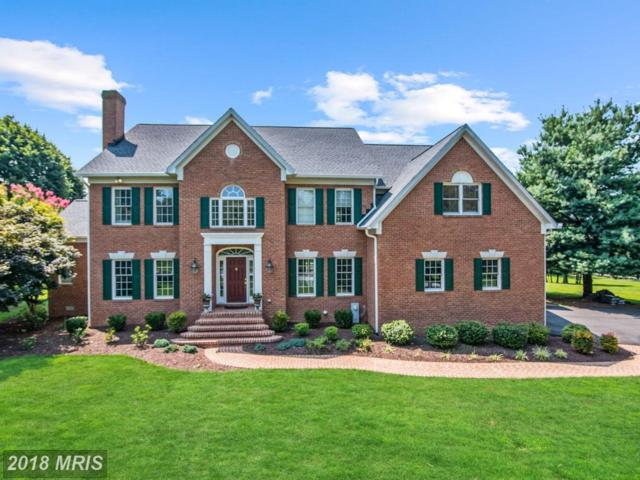 13317 Long Leaf Drive, Clarksville, MD 21029 (#HW10305525) :: Wes Peters Group
