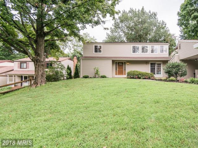 9116 Flamepool Way, Columbia, MD 21045 (#HW9011977) :: The Miller Team