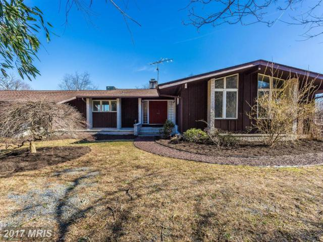 16395 Camalo Drive, Mount Airy, MD 21771 (#HW9872791) :: LoCoMusings