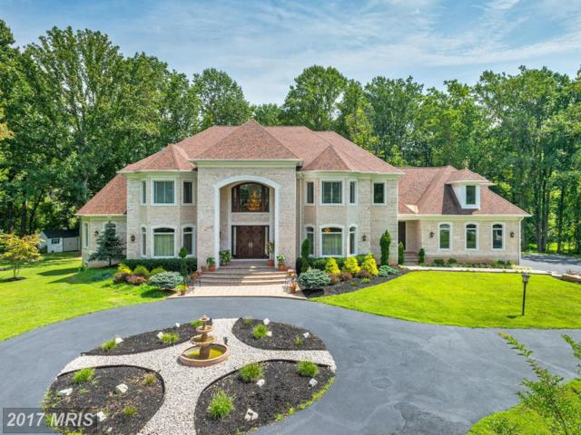 13301 Wicklow Place, Clarksville, MD 21029 (#HW9971329) :: Pearson Smith Realty