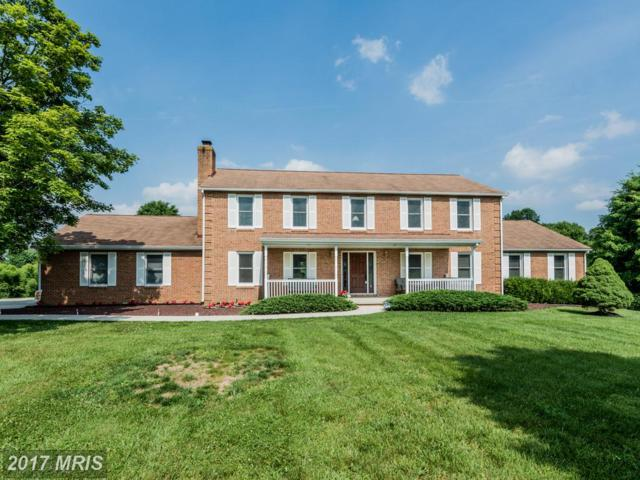 6551 Paper Place, Highland, MD 20777 (#HW9978077) :: Pearson Smith Realty