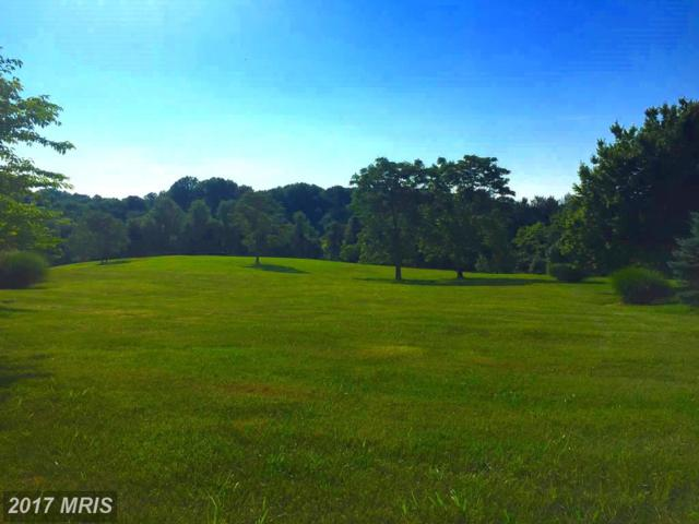Open Space Court, Highland, MD 20777 (#HW9978573) :: AJ Team Realty