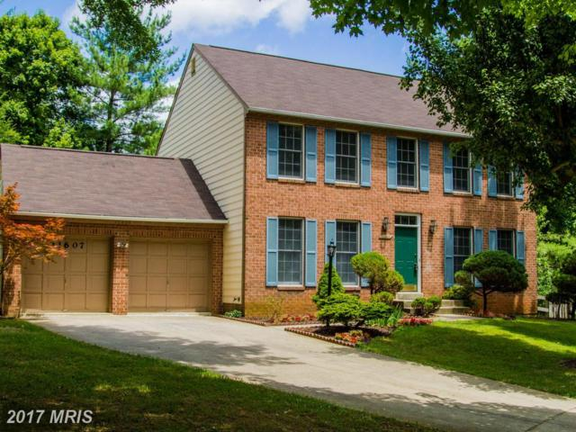 11607 Lakewater Lane, Columbia, MD 21044 (#HW9992176) :: LoCoMusings