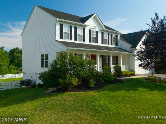 238 Canal Way, Shepherdstown, WV 25443 (#JF10022010) :: Pearson Smith Realty