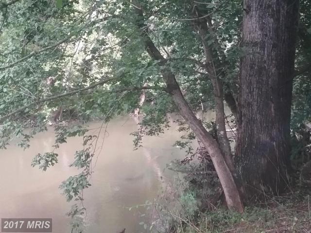 206 Meadow Bluff Lane, Kearneysville, WV 25430 (#JF9878941) :: Pearson Smith Realty