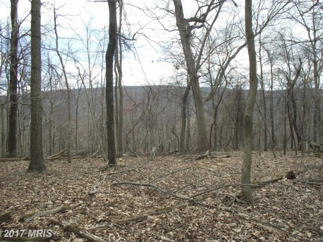 Adelaide, Harpers Ferry, WV 25425 (#JF9955458) :: Pearson Smith Realty