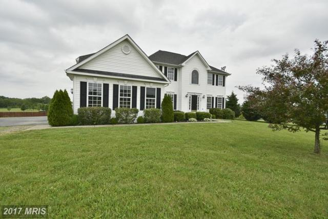 428 Spruce Hill Way, Charles Town, WV 25414 (#JF9956182) :: LoCoMusings