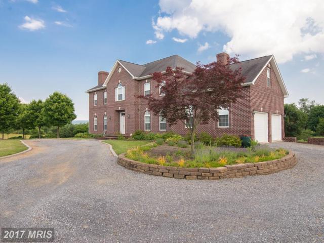 132 Trough Bend Lane SE, Shepherdstown, WV 25443 (#JF9979688) :: Pearson Smith Realty