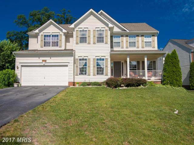 575 Sawgrass Drive, Charles Town, WV 25414 (#JF9987060) :: LoCoMusings