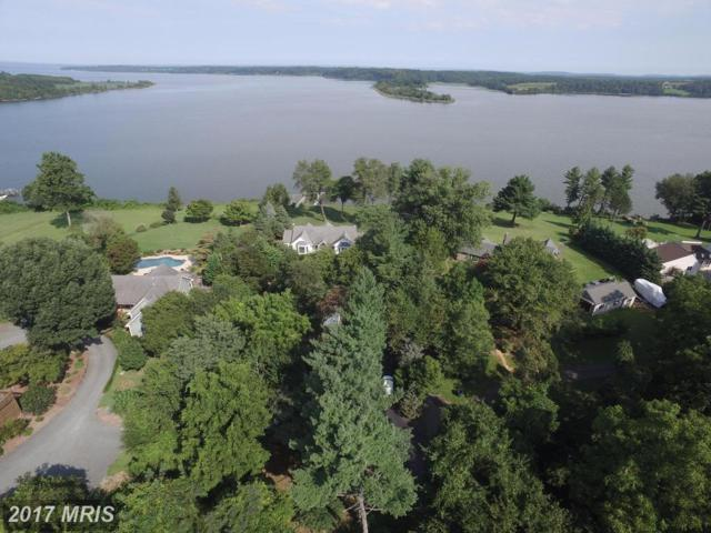 14029 Riverview Lane, Kennedyville, MD 21645 (#KE10067407) :: Pearson Smith Realty