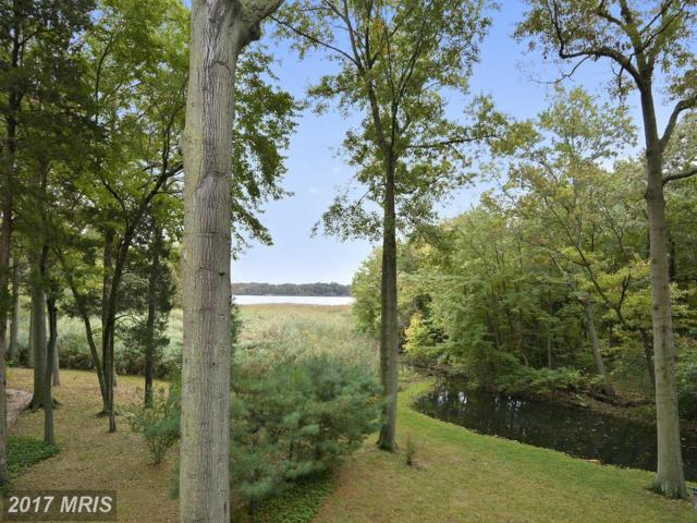 7 Cedar Chase Court, Chestertown, MD 21620 (#KE10079626) :: Pearson Smith Realty