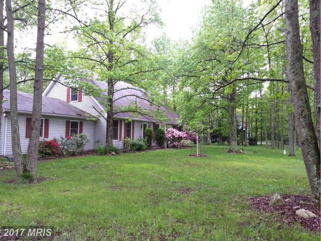 10205 John Carvill Road, Chestertown, MD 21620 (#KE9941241) :: Pearson Smith Realty