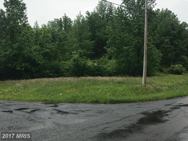 Buck Neck Landing Road, Chestertown, MD 21620 (#KE9943906) :: LoCoMusings