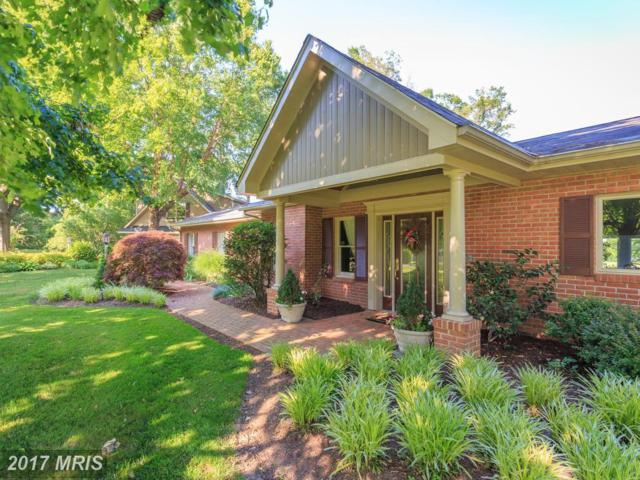 7703 Waterview Lane, Chestertown, MD 21620 (#KE9980579) :: Pearson Smith Realty