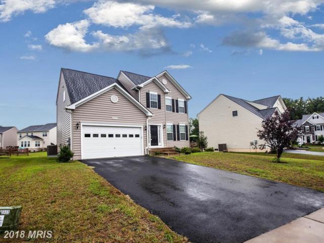11231 Brassica Lane, King George, VA 22485 (#KG10314807) :: RE/MAX Executives