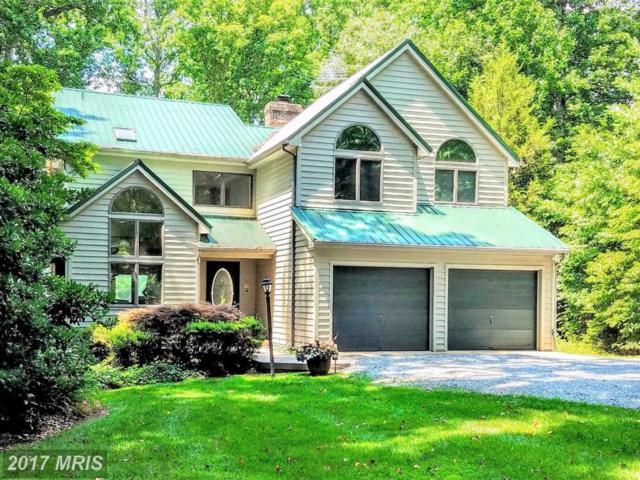 3337 Elk Creek Road, Mineral, VA 23117 (#LA10006244) :: Pearson Smith Realty
