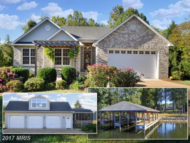 578 Lakeview Drive, Mineral, VA 23117 (#LA10099226) :: Pearson Smith Realty
