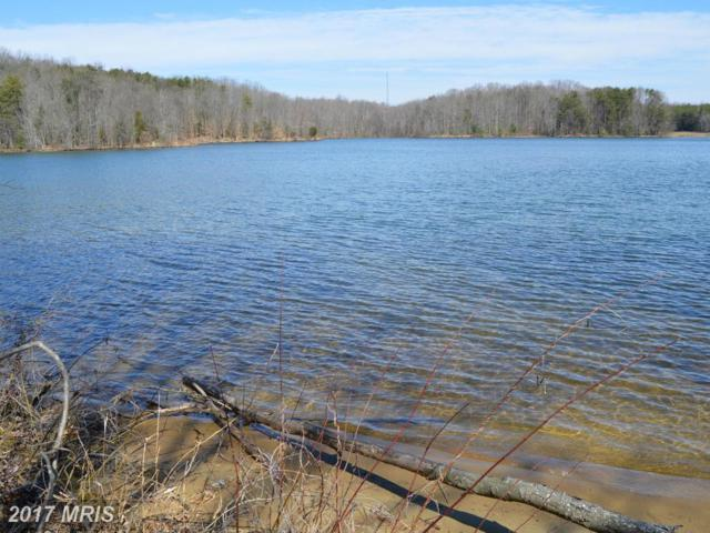 Lakeview Drive, Mineral, VA 23117 (#LA9886295) :: Pearson Smith Realty