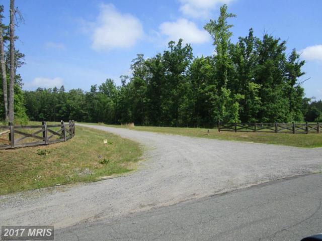 1 Dove Hollow, Louisa, VA 23093 (#LA9918330) :: Pearson Smith Realty