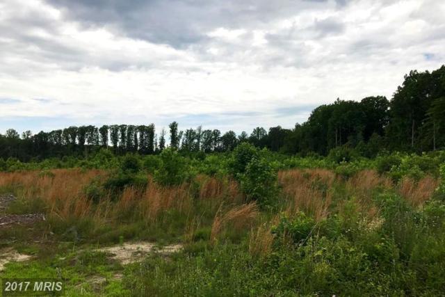 Old Apple Grove, Mineral, VA 23117 (#LA9962979) :: LoCoMusings