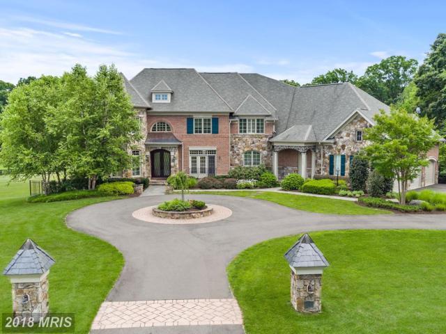 41031 Grenata Preserve Place, Leesburg, VA 20175 (#LO10004298) :: Keller Williams Pat Hiban Real Estate Group