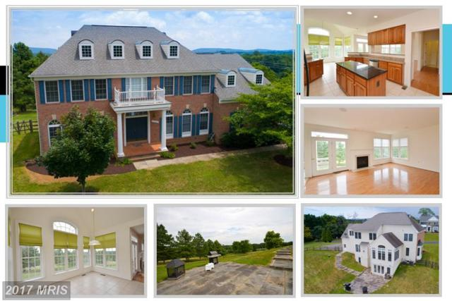 11500 Potomac Heights Lane, Lovettsville, VA 20180 (#LO10005655) :: Pearson Smith Realty