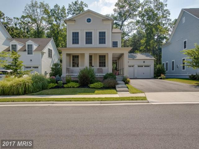 24962 Greengage Place, Aldie, VA 20105 (#LO10013239) :: Pearson Smith Realty
