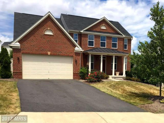 25291 Kilkeen Way, Aldie, VA 20105 (#LO10013580) :: Wicker Homes Group