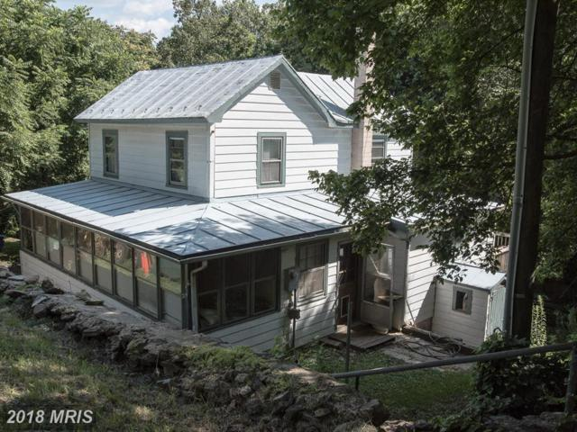 33563 Snickersville Turnpike, Bluemont, VA 20135 (#LO10019615) :: The Gus Anthony Team