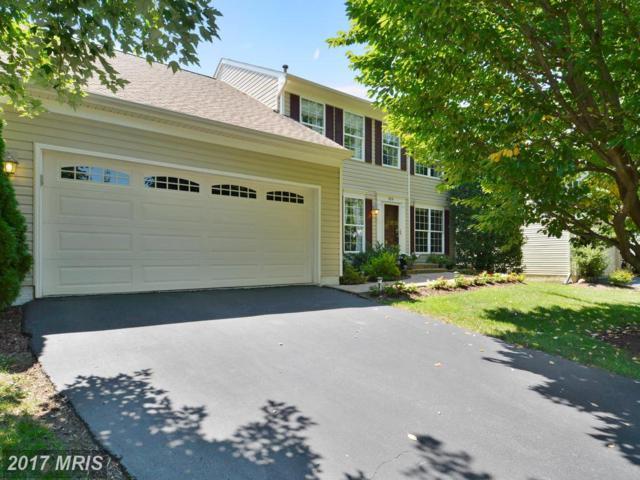 814 Bellview Court NE, Leesburg, VA 20176 (#LO10019651) :: Pearson Smith Realty