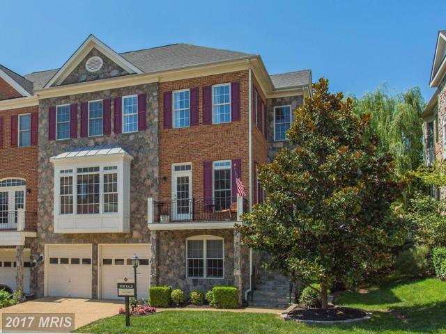 43694 Lees Mill Square, Leesburg, VA 20176 (#LO10028314) :: Pearson Smith Realty