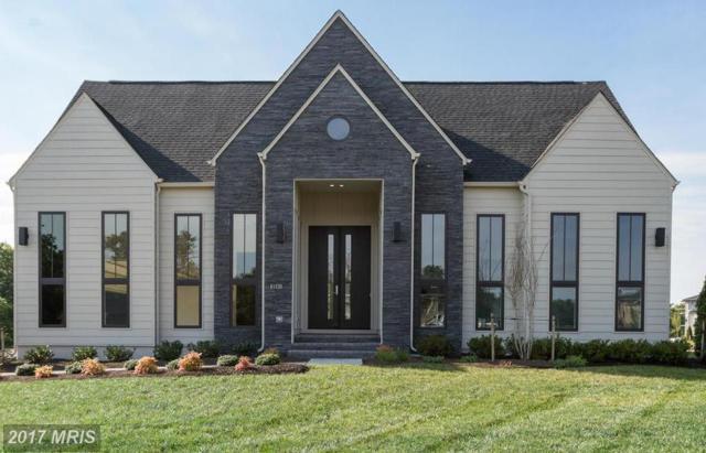 41211 Dales Pony Lane, Aldie, VA 20105 (#LO10042441) :: Pearson Smith Realty