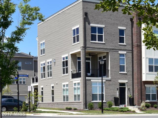 21085 Ashburn Heights Drive, Ashburn, VA 20148 (#LO10044520) :: Pearson Smith Realty