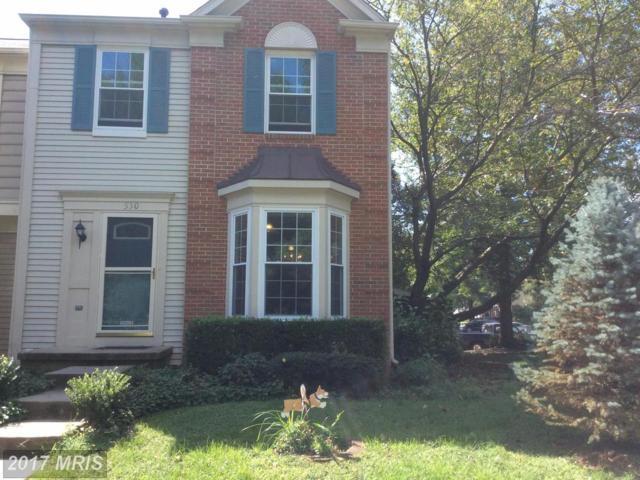 530 Currant Terrace NE, Leesburg, VA 20176 (#LO10048838) :: Pearson Smith Realty