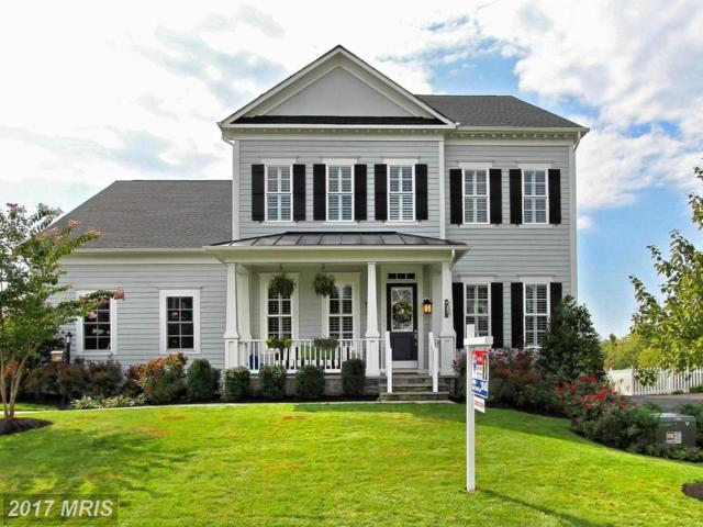 41605 Bloomfield Path Street, Ashburn, VA 20148 (#LO10049868) :: Labrador Real Estate Team