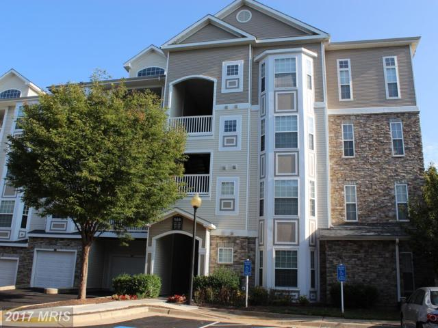508 Sunset View Terrace SE #307, Leesburg, VA 20175 (#LO10049944) :: Pearson Smith Realty