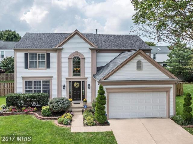 707 Chimney Court NE, Leesburg, VA 20176 (#LO10055546) :: Mosaic Realty Group