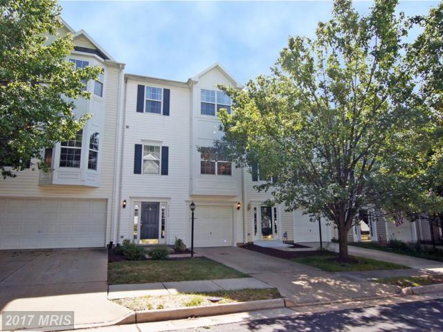 20364 Mount Pleasant Terrace, Ashburn, VA 20147 (#LO10057101) :: Pearson Smith Realty