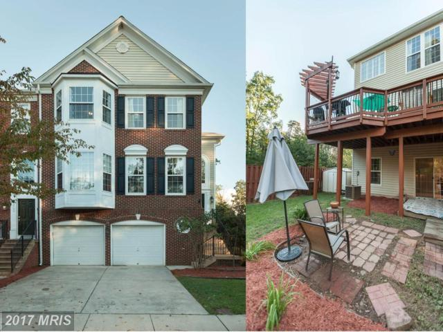 22732 Dexter House Terrace, Ashburn, VA 20148 (#LO10057510) :: Pearson Smith Realty