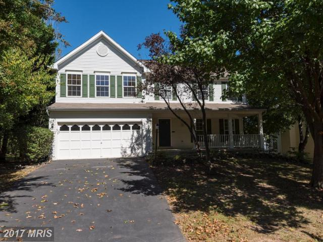 42836 Crossbow Court, Ashburn, VA 20147 (#LO10058725) :: Wicker Homes Group