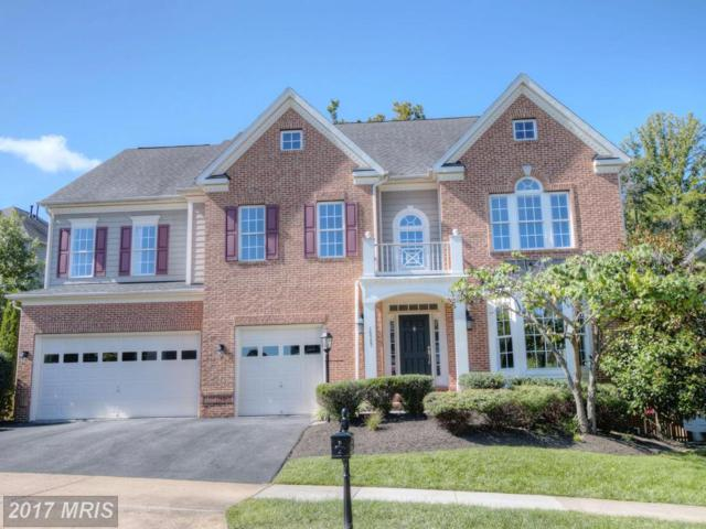 18787 Thomas Lee Way, Leesburg, VA 20176 (#LO10058815) :: Wicker Homes Group