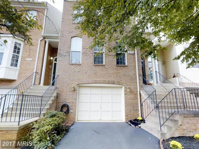 21189 Millwood Square, Sterling, VA 20165 (#LO10065104) :: Pearson Smith Realty