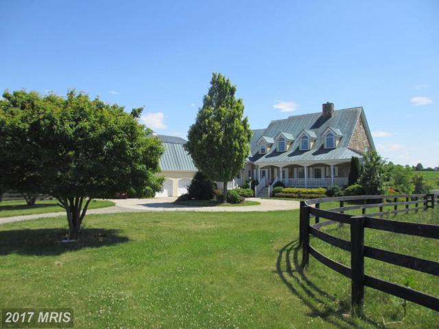 15614 Daley Farm Lane, Purcellville, VA 20132 (#LO10069274) :: LoCoMusings
