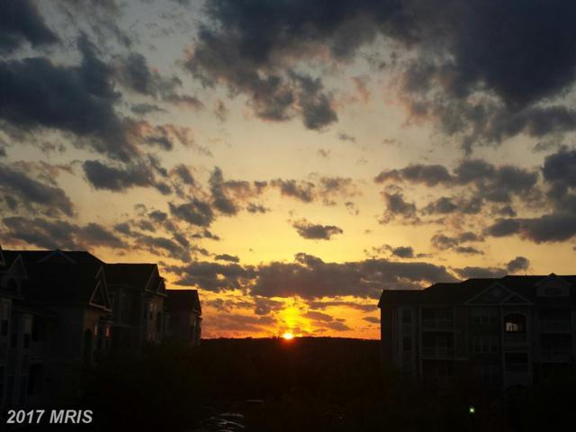 502 Sunset View Terrace SE #204, Leesburg, VA 20175 (#LO10069602) :: LoCoMusings