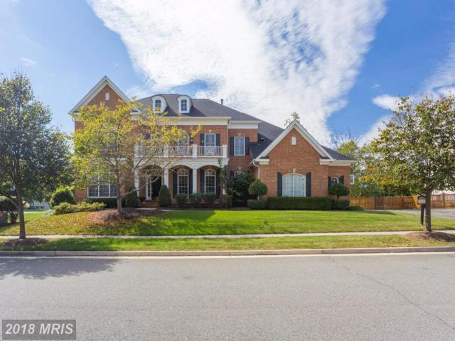 43241 Overview Place, Leesburg, VA 20176 (#LO10072875) :: The Greg Wells Team