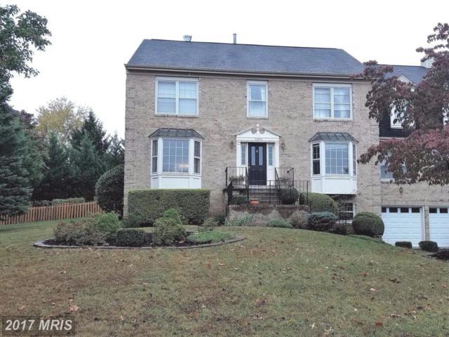 20376 Altavista Way, Ashburn, VA 20147 (#LO10073640) :: Wicker Homes Group