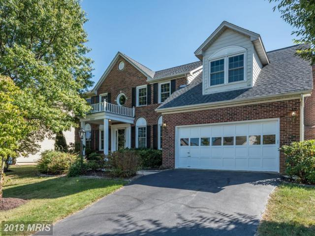 43447 Thistlewood Court, Ashburn, VA 20147 (#LO10074925) :: Pearson Smith Realty