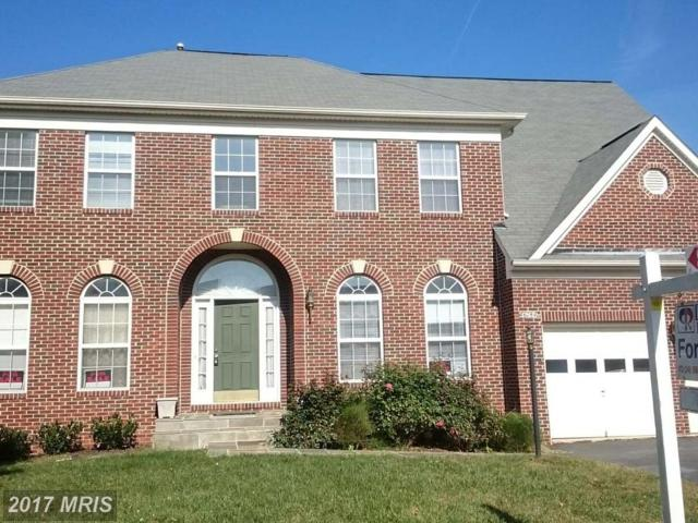46784 Hollow Mountain Place, Sterling, VA 20164 (#LO10080626) :: LoCoMusings