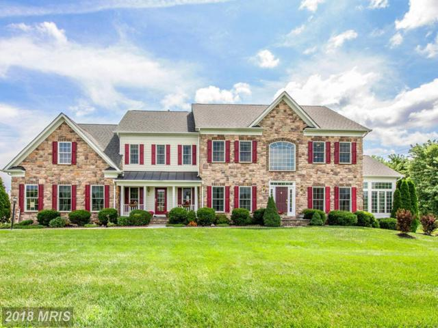 16658 Goldencrest Circle, Purcellville, VA 20132 (#LO10082176) :: LoCoMusings